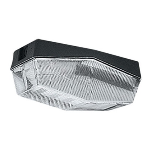 JL100 GLS ES JULUX CLEAR | Flood | Lighting | All Categories | CNW