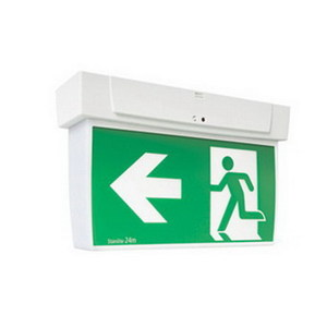 EXIT LIGHT LED ECON PICTOGRAPH